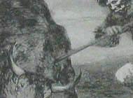Francisco de Goya - La Tauromaquia, Plate 2